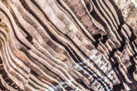 中1 理科 堆積岩の種類まとめと問題