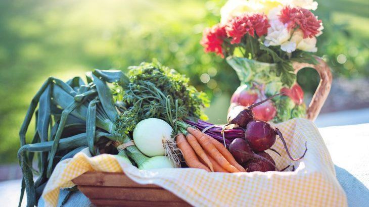 英作文・自己紹介で使える!野菜の種類・名前英語一覧
