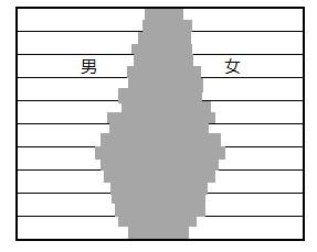 人口ピラミッドのつぼ型