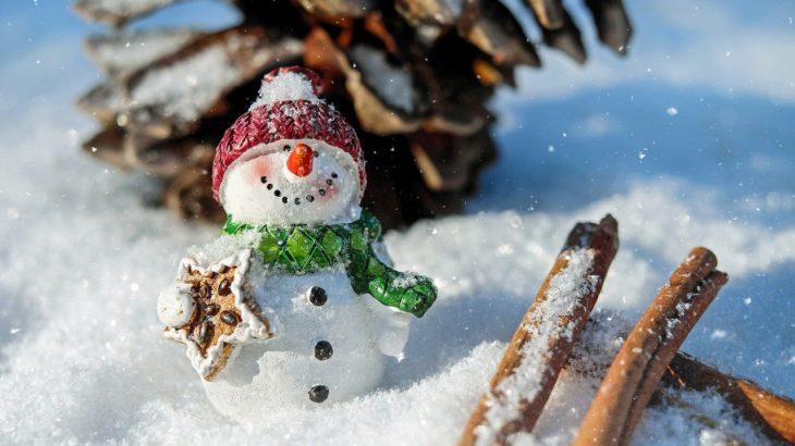 【中学生】塾の冬期講習は行くべき?断り方と家庭学習の進め方!