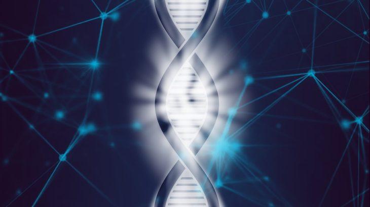 中3理科【生命の連続性】遺伝の規則性まとめと問題