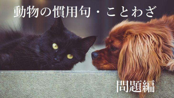 【中学・高校入試】動物の慣用句・ことわざの問題まとめ